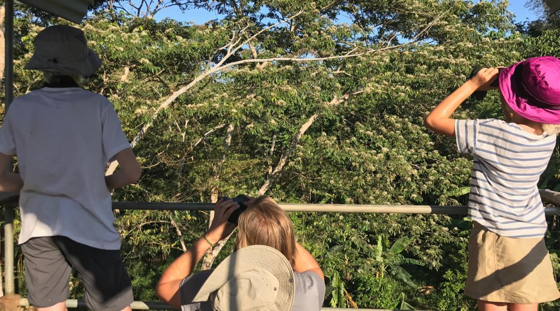 Het gezin doet waardevol natuurbehoud vrijwilligerswerk in het Taricaya Ecological Reserve in Peru.